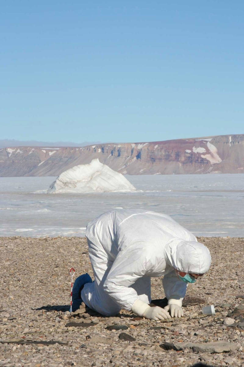 Looking for ancient human remains in northern Greenland. Credit and copyright: Claus Andreasen.