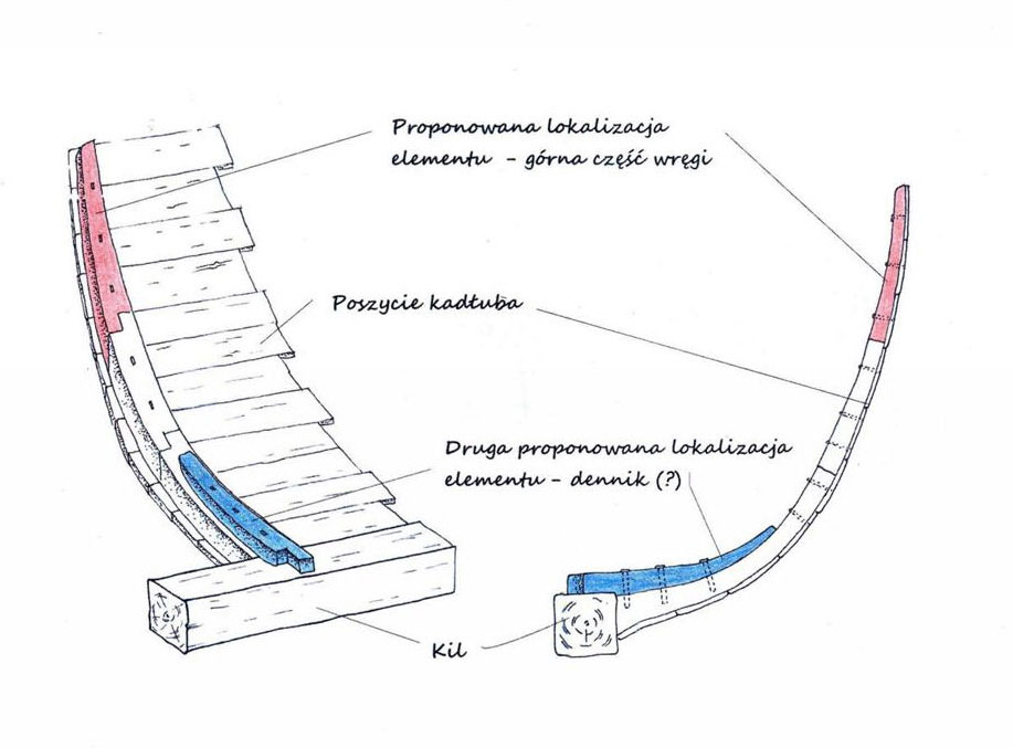 Reconstruction of the position of the frame in the hull plating. Fig. J. Rądkowska / Berenike Project, PCMA UW.
