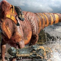 New hadrosaur noses into spotlight