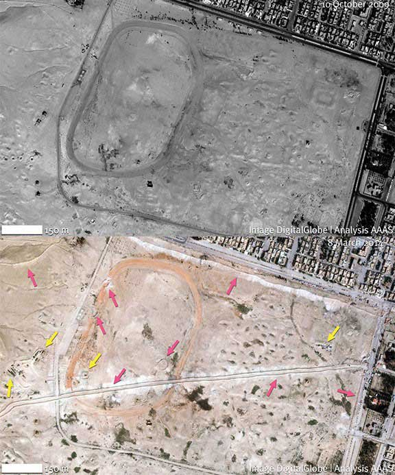 Between Oct. 10, 2009, (top) and March 8, 2014, (bottom), Palmyra's North Roman Necropolis has been disrupted by road construction and numerous earthen berms (pink arrows) to provide cover for military vehicles (yellow arrows). Credit: Images ©2014, DigitalGlobe, Analysis AAAS. Coordinates 34.55N, 38.26E.