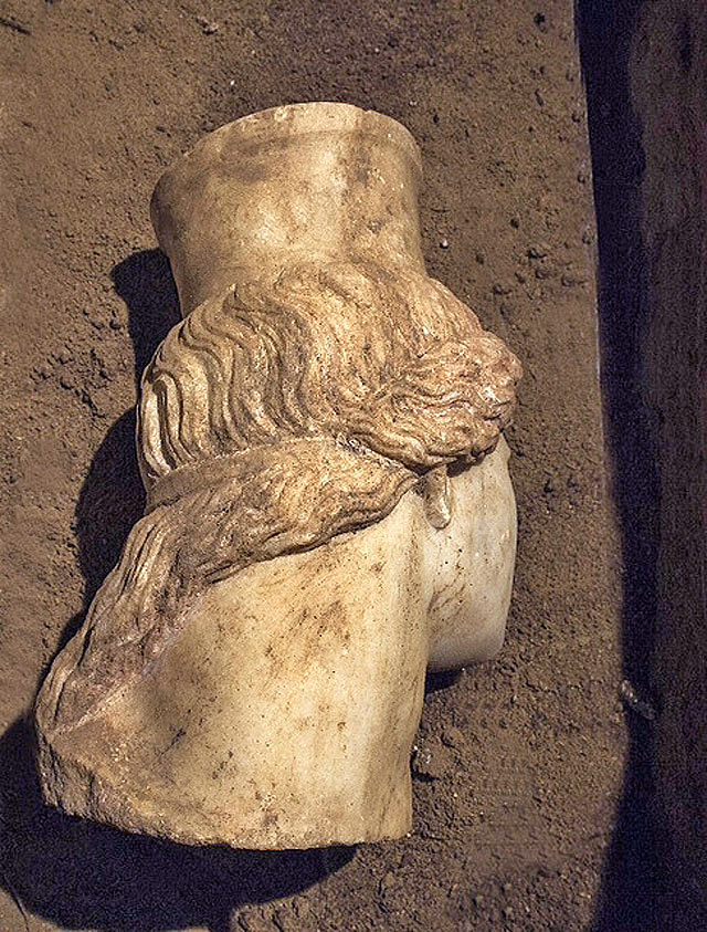 Fig. 4. The head has waving hair locks with traces of red pigment. The curls fall onto the Sphinx's left shoulder.