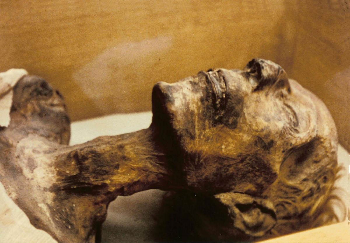 Mummy of King Rameses II.