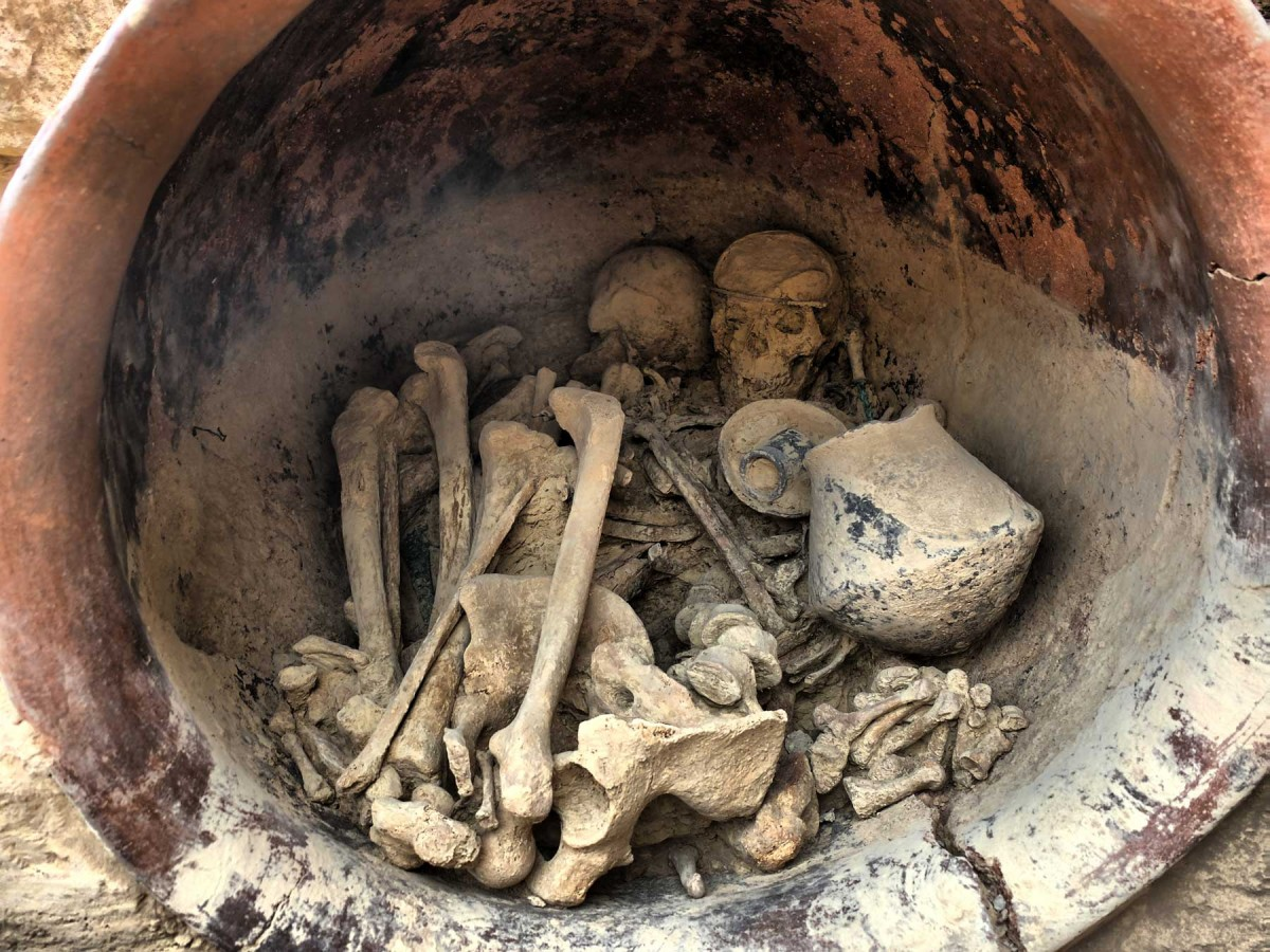 Interior of the royal tomb with the skeletons and grave goods. Photo credit: Universitat Autònoma de Barcelona