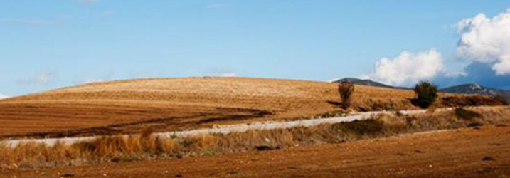 Conference aiming to investigate our changing perceptions on Neolithic landscapes in Greece .