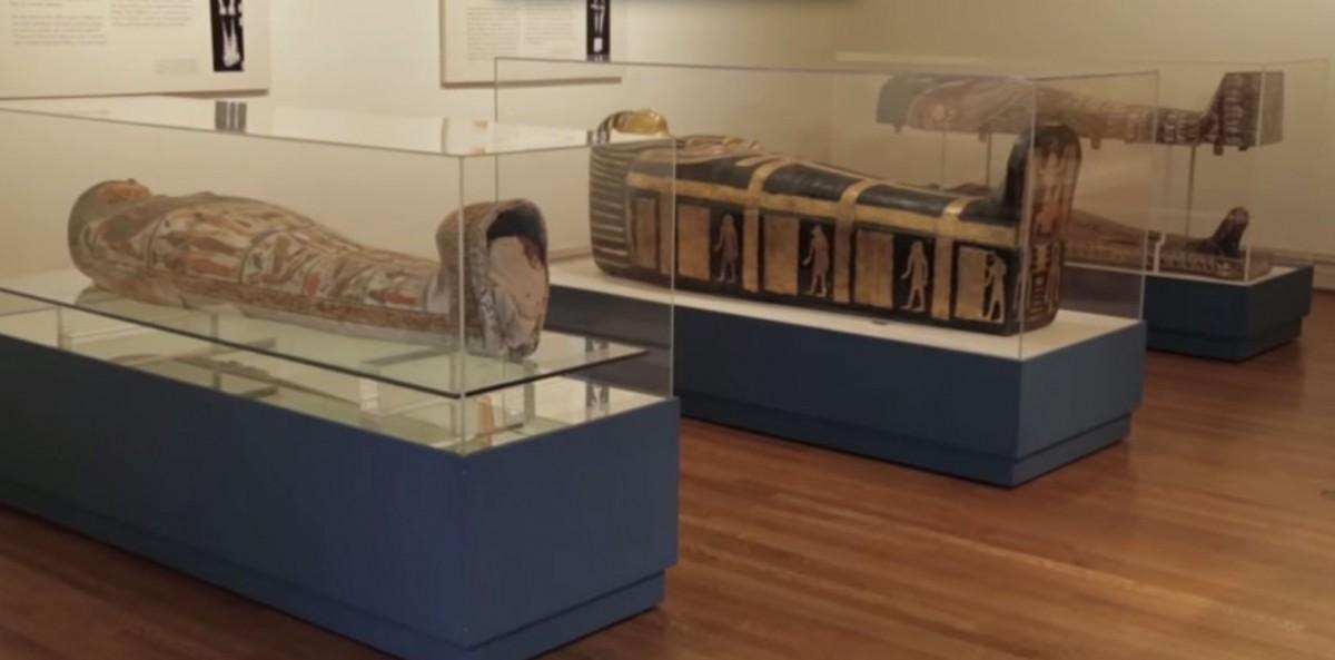 The Saint Louis Art Museum's mummy is Amen-Nestawy-Nakht, a male; the Kemper Art Museum mummies are Pet-Menekh, also a male, and Henut-Wedjebu, a female.