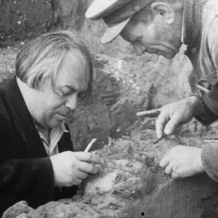 The 1954 photo provided by the Centre for GeoGenetics of the Natural History Museum of Denmark shows M.M. Gerasimov (on the right) with A.N. Rogachev (head of expedition on the left) excavating the fossil of Kostenki XIV in Kostenki-Borshchevo in what is now western Russia. Photo credit: AP Photo/Peter the Great Museum of Anthropology and Ethnography