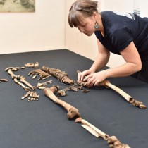 New discoveries tell more on the story behind the Sandby borg massacre