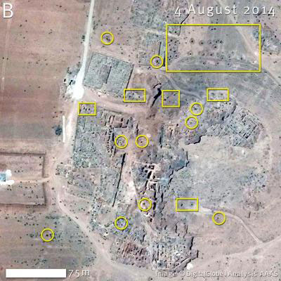 A large number of holes, consistent with looting pits, appeared at Ebla between Jan. 17, 2013 and the Aug. 4th, 2014 photo shown here. Coordinates: 35.79 N, 36.79 E. Credit: Image copyright DigitalGlobe | US Department of State, NextView License | Analysis AAAS