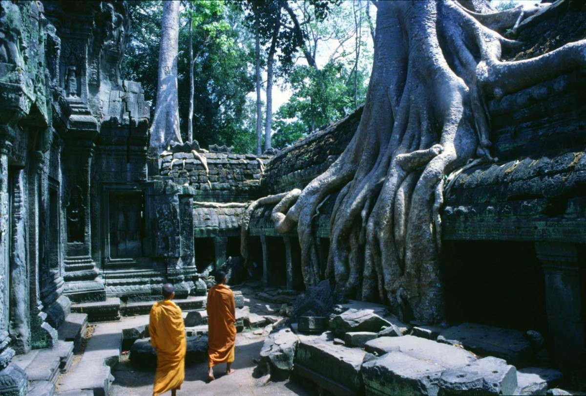 Monks in Angkor's Ta Prohm temple. Photograph: Alamy.