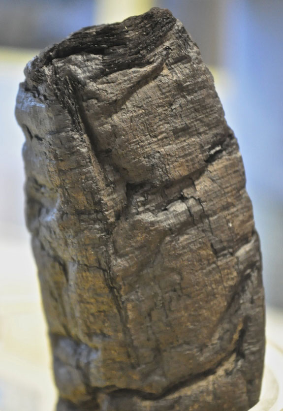 Another charred papyrus scroll from Herculaneum. Photo Credit: E. Brun.