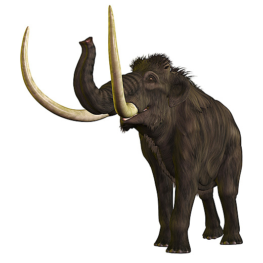 The Younger Dryas, the period being studied by UC Davis and other earth scientists, coincided with the extinction of mammoths and other great beasts and the disappearance of the Paleo-Indian Clovis people.