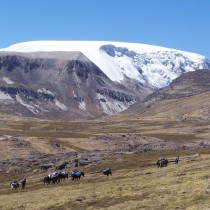 Traces of large-scale human-produced air pollution in Peruvian ice cap