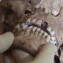 Video reveals potential 'killer blow' to King Richard III