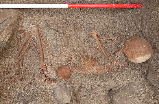 The skeleton was found almost complete. [Photo: Sanday Ranger]