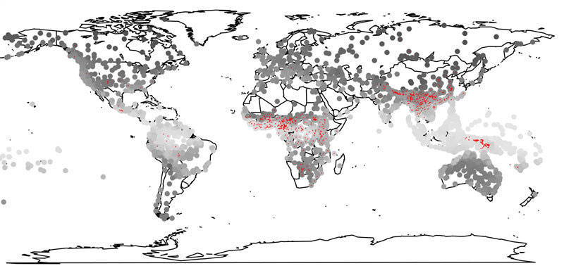 Languages in humid regions of the Earth (light circles) are more often tonal languages (red) than in dry regions. © MPI f. Psycholinguistics/ Roberts.