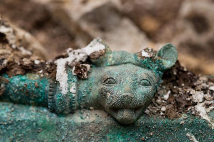 Lion head © Denis Gliksman Inrap.