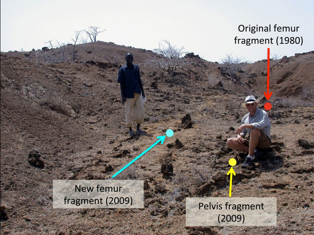 Hilary Sale and paper co-author Matthew Skinner pose at the Koobi Fora site in Kenya where they uncovered the ancient fossils.
