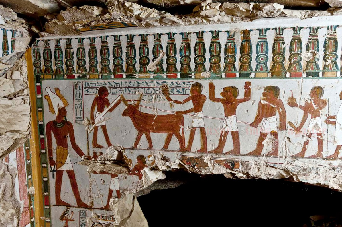 Daily life scenes depicted on wall paintings of the tomb discovered in Qurna.
