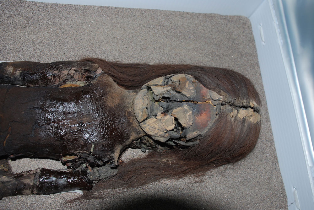 The black chest of this Chinchorro mummy shows signs of degradation, even though it is housed at the University of Tarapacá's archeological museum in Arica, Chile.Photo Credit: Courtesy of Vivien Standen.