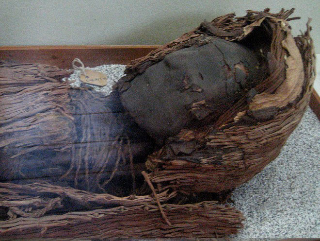 Head of a Chinchorro mummy. Photo: Wikimedia Commons.
