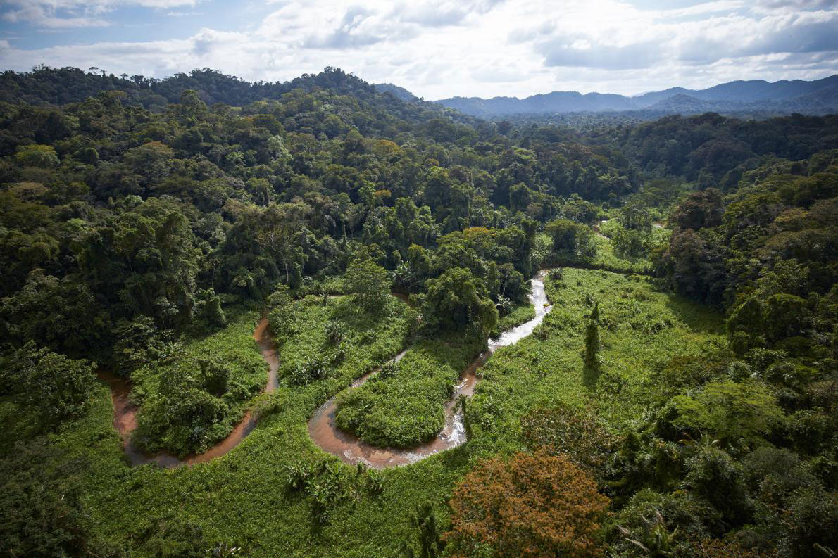 "A stream winds through part of an unexplored valley in Mosquitia in eastern Honduras, a region long rumored to contain a legendary ""White City,"" also called the"