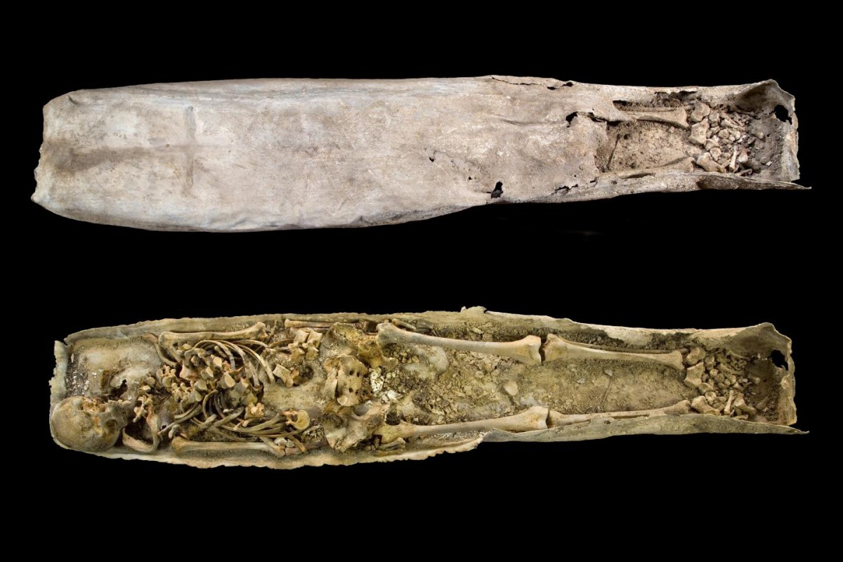 This is the inner lead casket of the Greyfriars medieval stone coffin. Credit: University of Leicester.