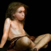 Ossicle of Neanderthal child reconstructed