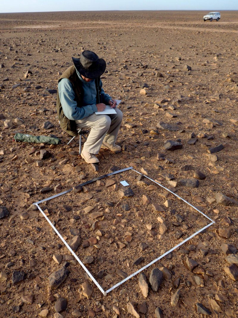 This is Prof. Robert Foley recording lithic density on the Messak. Credit: Foley/Mirazón Lahr
