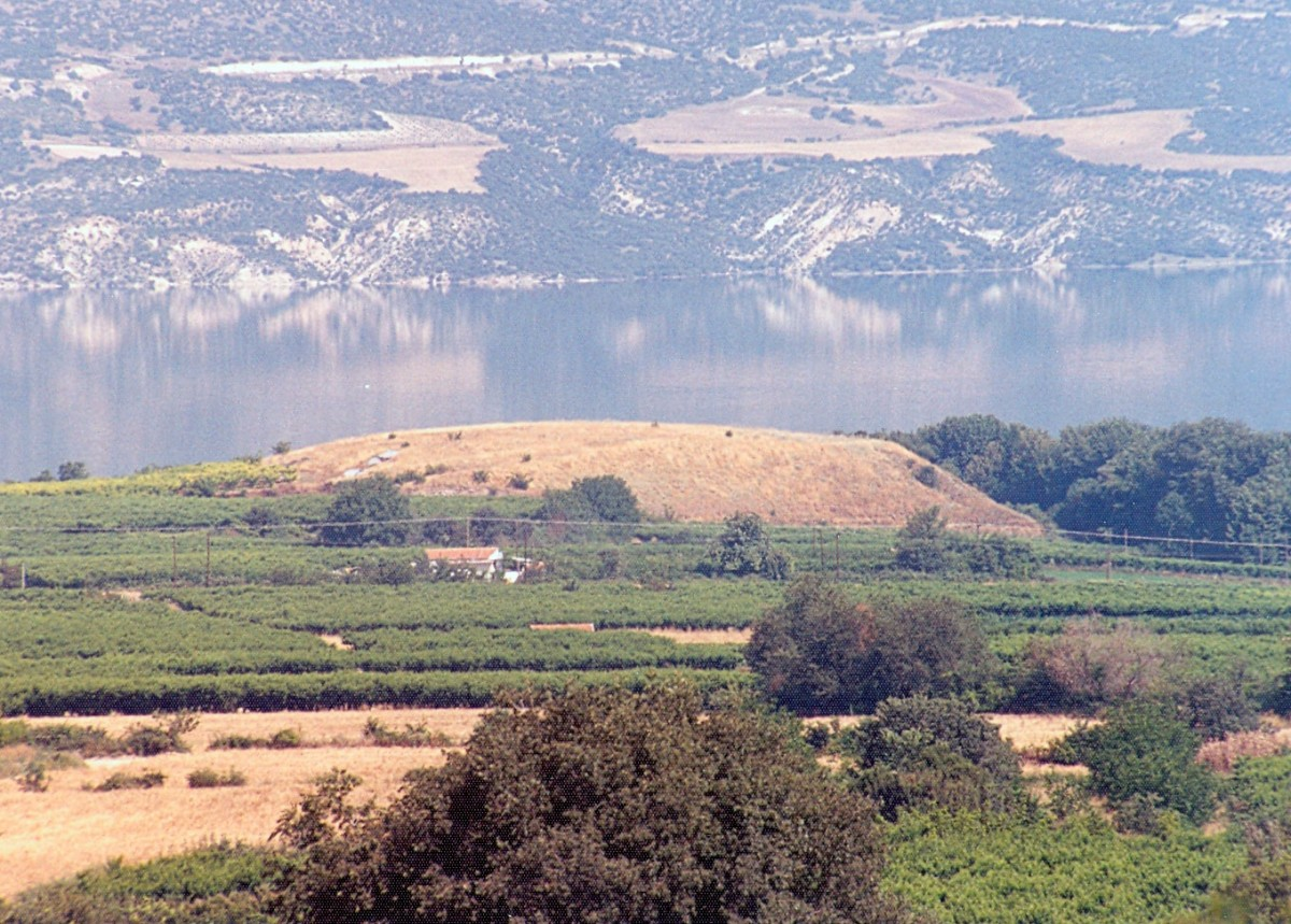 Fig. 7. The prehistoric settlement of Vasilara Rachi Velvendos, view from the south.