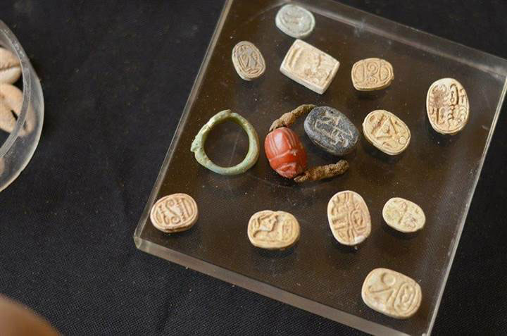 Scarabs and seal rings are laid out on a display stand in Jerusalem. Some of the seals bear the names of Egyptian pharaohs. Photo Credit: IAA.