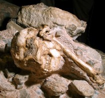 New dating method says Little Foot is 3.67 million years old