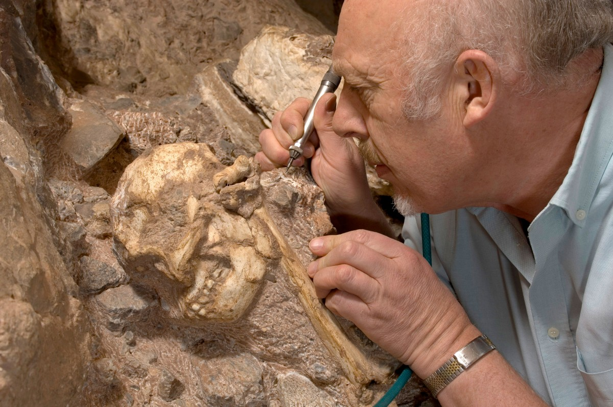 Professor Ron Clarke with Little Foot in the Sterkfontein Caves. Photo Credit: Purdue University.