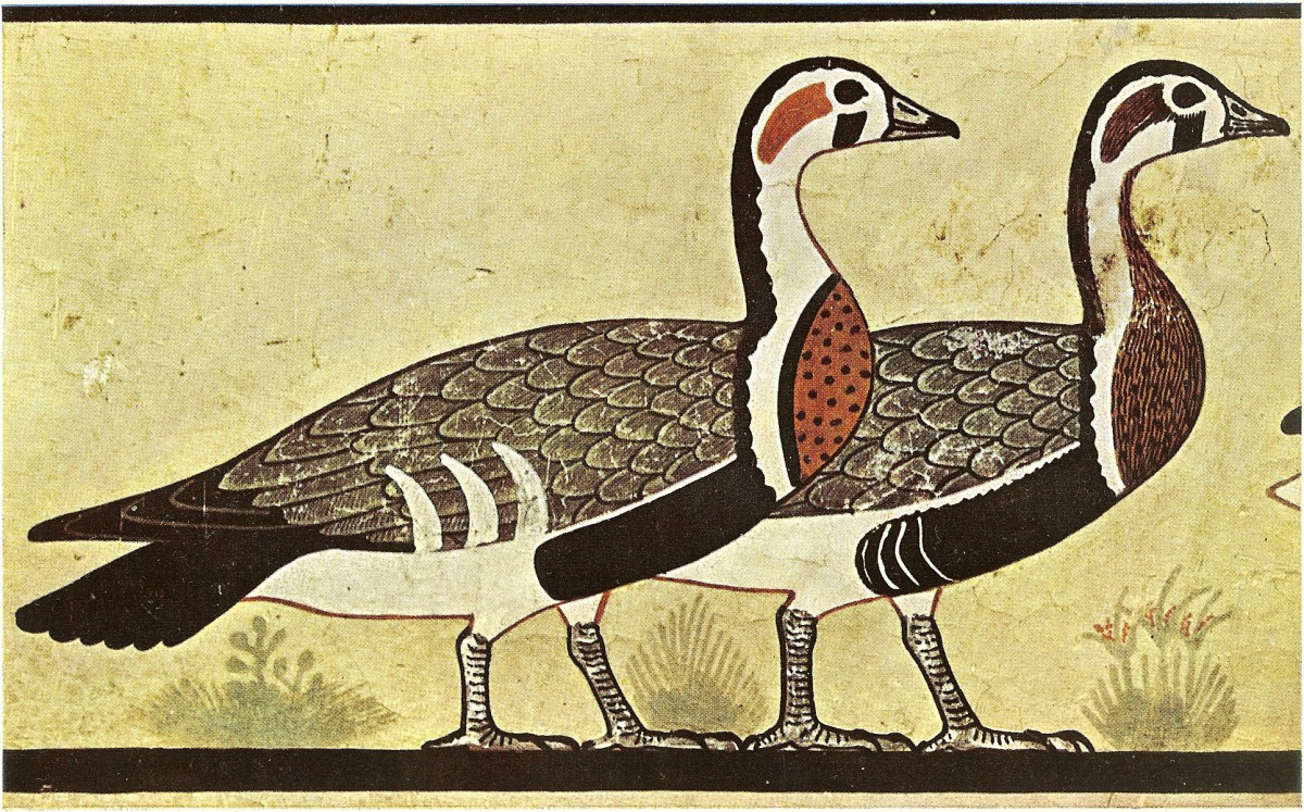 Detail of the depiction in a copy at the MET Musuem, showing the types of geese unlikely to be found in Egypt.