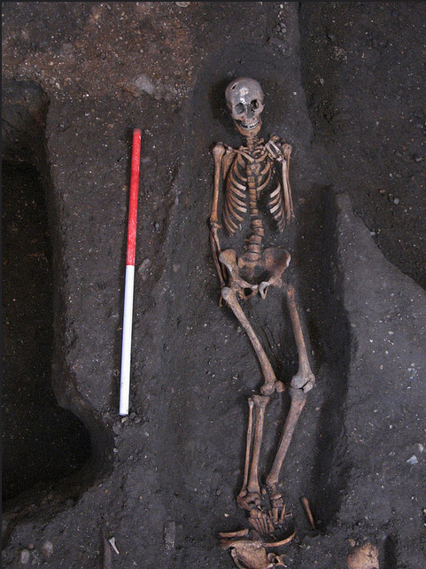 One of the over 400 13th-15th century bodies buried in the cemetery of the Hospital of St John the Evangelist, discovered beneath the Old Divinity School at St John's College.