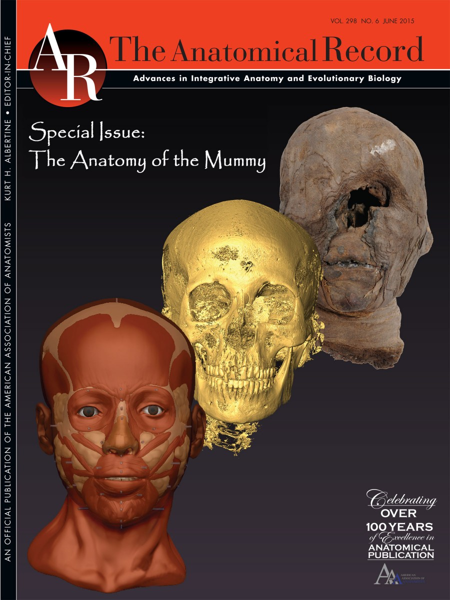 In 26 articles, the anatomy of mummies is exquisitely detailed through cutting edge examination.