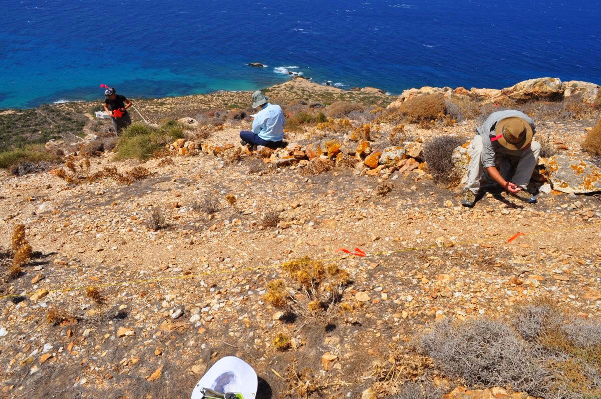 Archaeologists working at the site. Photo Credit: Vima Naxou.