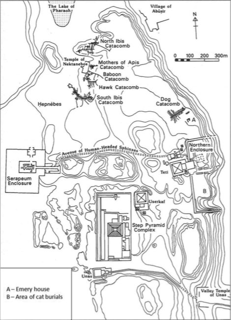 A map of North Saqqara showing where the ancient Egyptians built the animal catacombs. Photo Credit: Live Science / P.T. Nicholson.