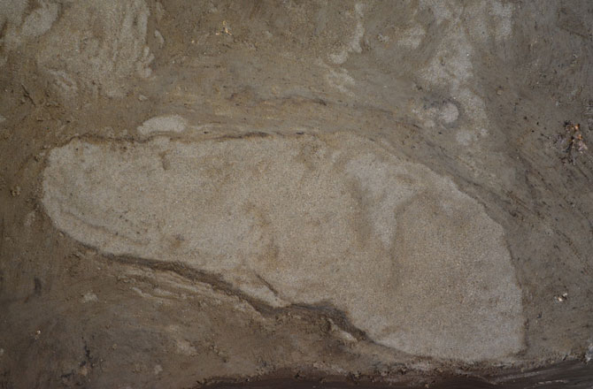 The 5,000-year-old footprints. Museum Lolland-Falster, Denmark.