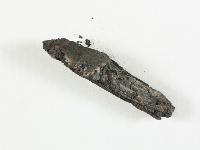 The charred scroll. Image: Shay Halevi/Israel Antiquities Authority.