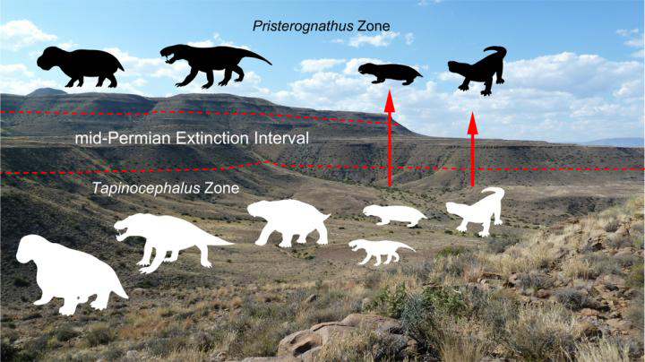 This is an illustration of the Guadalupian extinction. Credit: Wits University