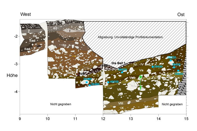 Stratigraphic profiles near where the new fragments were found; locations of the finds are marked with green stars. The blue ages are from radiocarbon measurements on bones. Photo Credit: M. Malina/ University of Tübingen