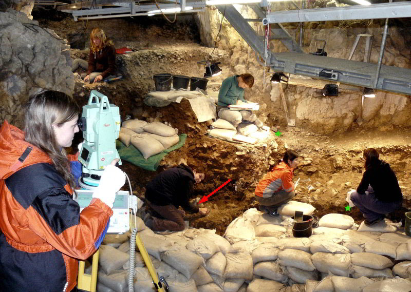 Photo of the excavations at Hohle Fels Cave in 2008. The red arrow shows the location of the female figurine from 2008, and the two green stars show where the two new finds were discovered. Photo Credit: M. Malina/ University of Tübingen.