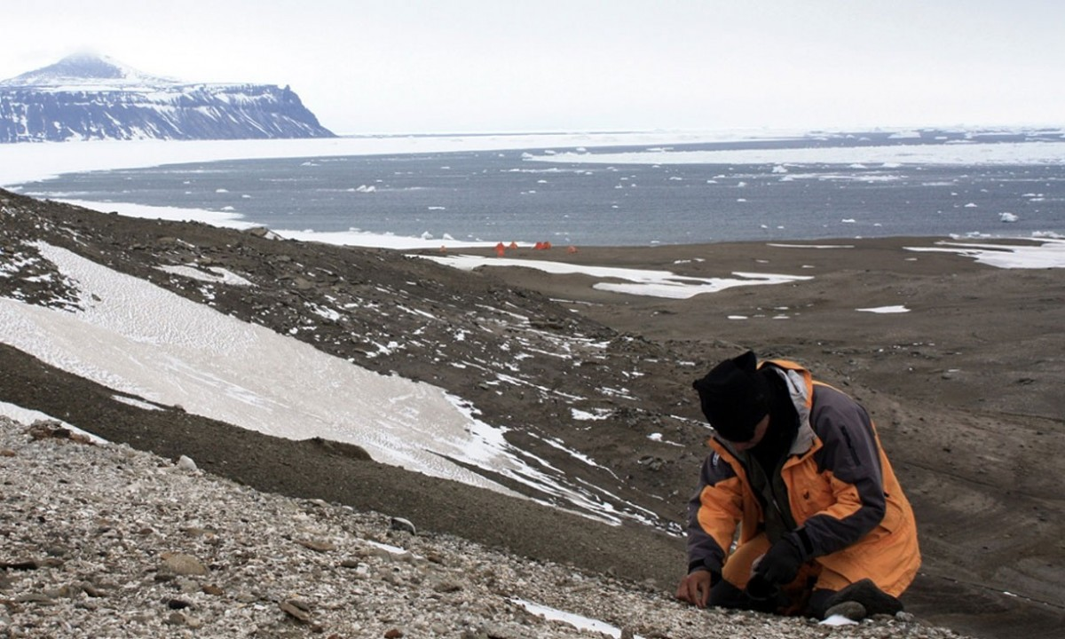 A palaeontologists digging at the site where the fossil was found on Seymour Island, Antarctica. Photo Credit: Federico Degrange / The Guardian.