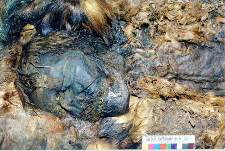 Another mummified body from the site, covered in copper and fur. Photo Credit: The SIberian Times / Natalya Fyodorova.