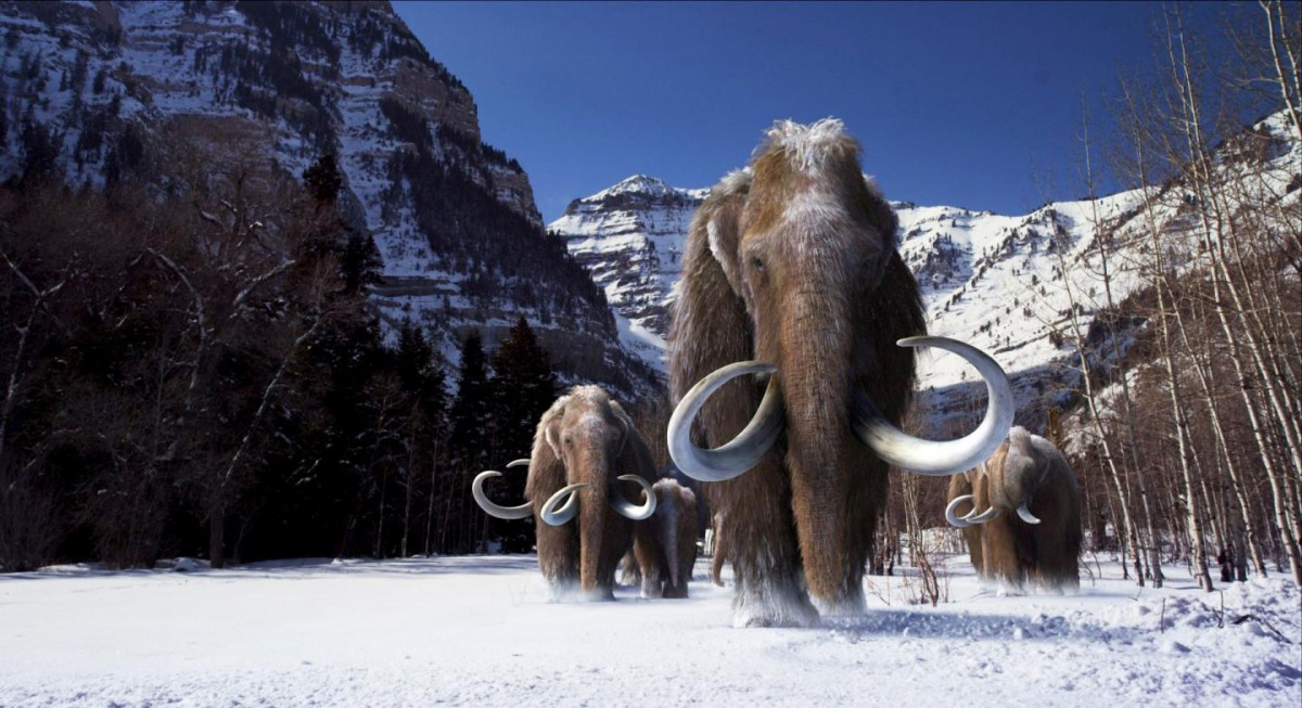 These are woolly mammoths. Credit: Image courtesy of Giant Screen Films (©) 2012 D3D Age, LLC