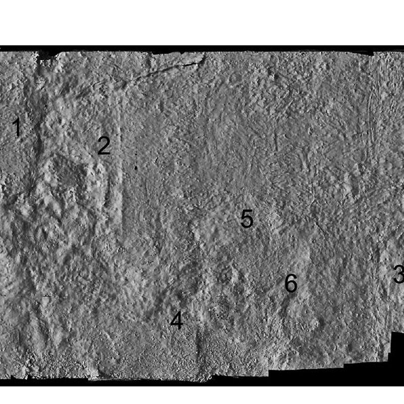 Surface relief with numbered features.