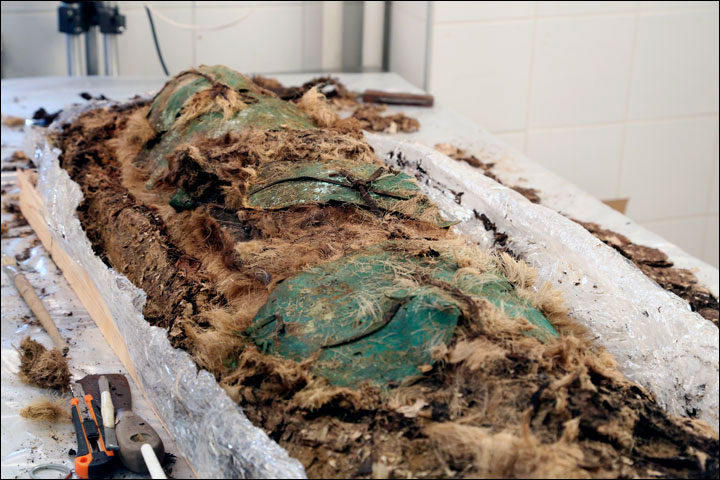 The body was covered with copper or bronze plates. Photo Credit: The Siberian Times.
