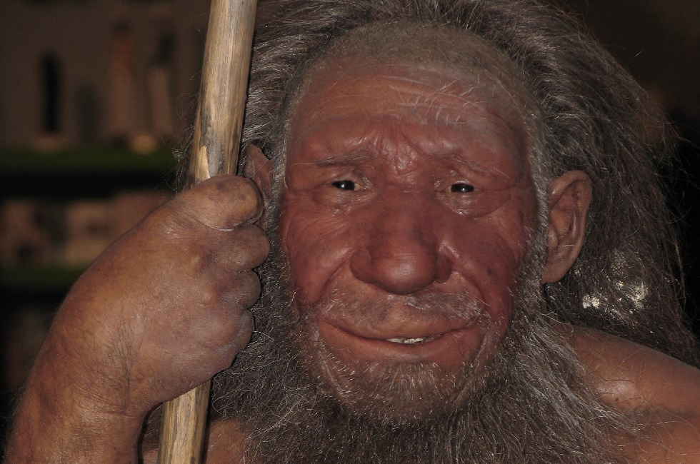 Researchers show how our sense of smell evolved, including in cave men.