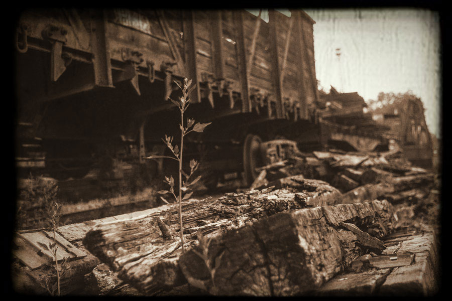 Has a lost Nazi ghost train carrying gold finally been found? Credit: walbrzych24.com