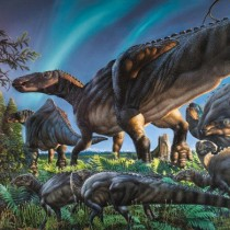 New dinosaur species discovered in Alaska